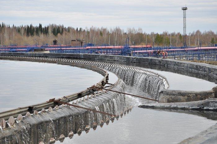 ВБарнауле собираются производить удобрения изосадка сточных вод