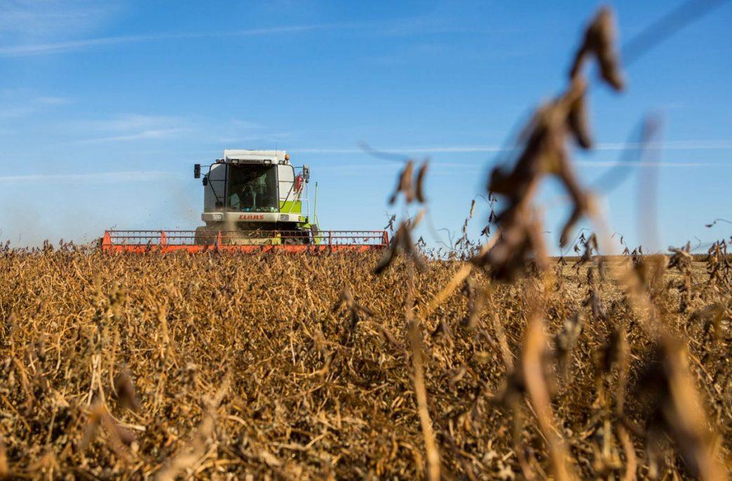 ТОР «Приамурская» станет центром дистрибьюции агрохимикатов