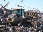В Канаде запущена учебная программа по восстановлению экологии почв