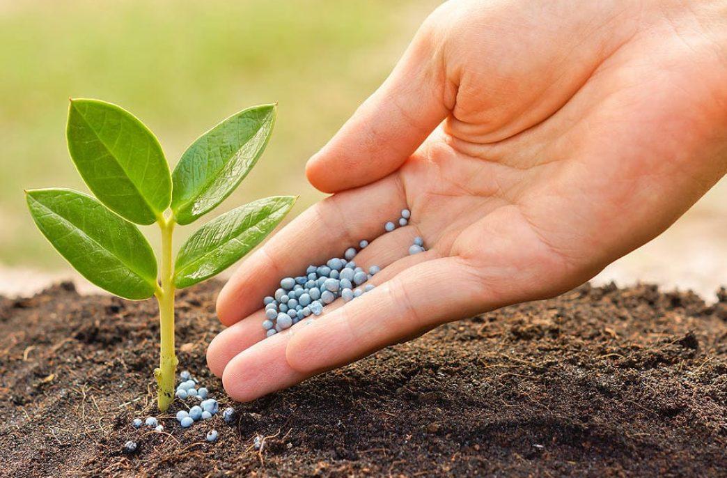 В Барнауле создадут производство органоминеральных удобрений