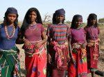 Калий может вытащить Эритрею из нищеты