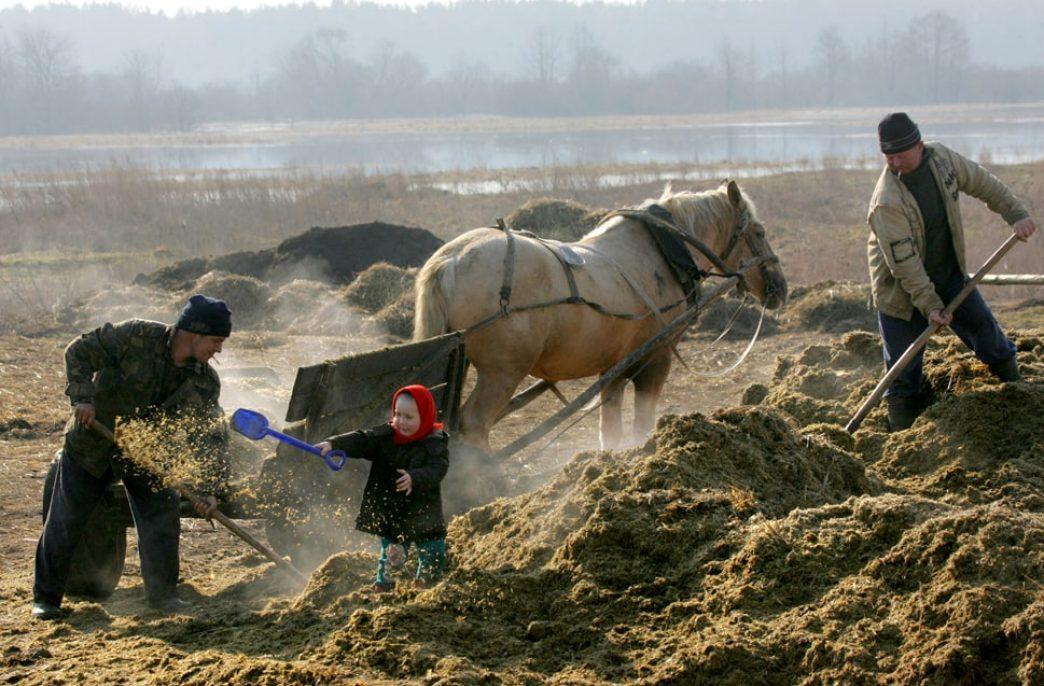Беларусь готовится к яровому севу