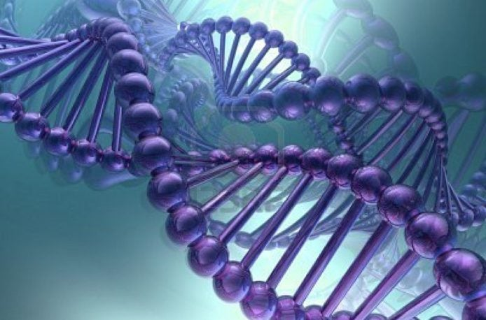Турция озаботилась ДНК-маркировкой удобрений