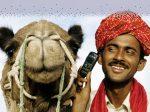 В Индии развиваются электронные продажи агрохимикатов