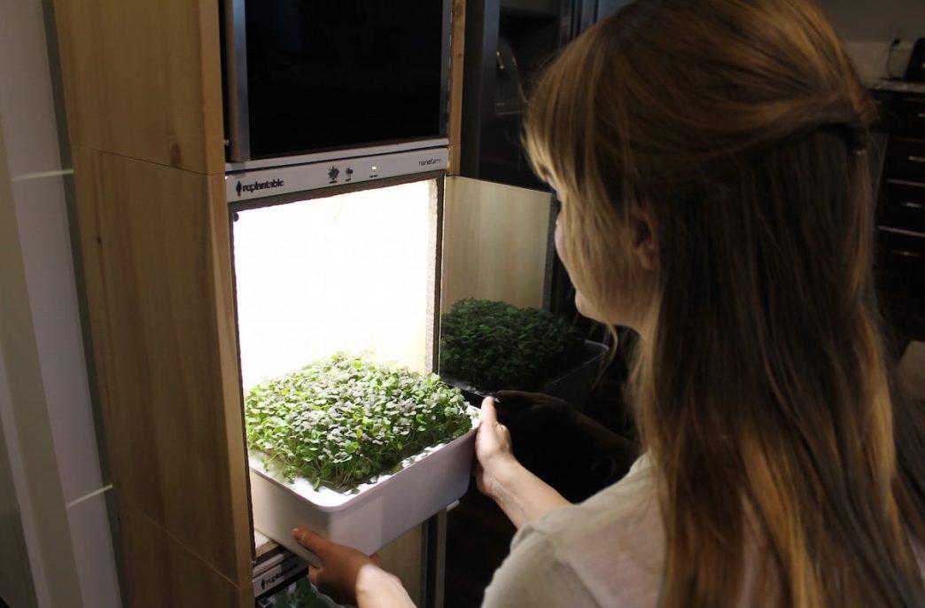 В США создали наноферму для кухни
