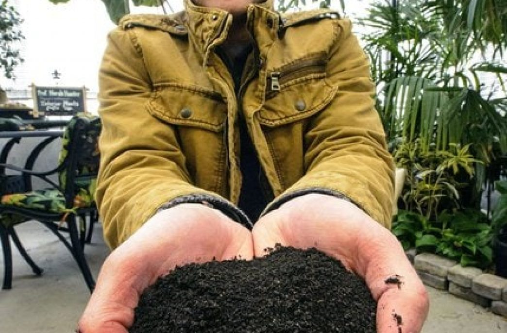 Новый стартап из Юты нацелен на рынок марихуаны
