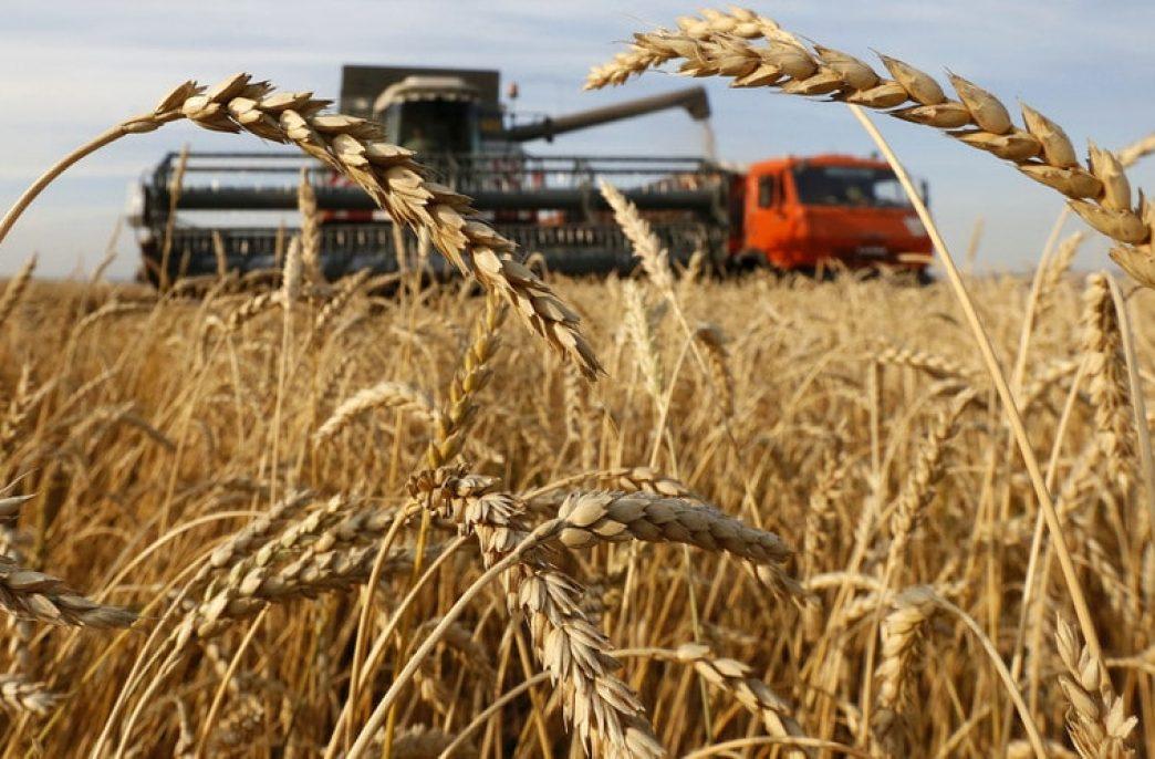 Россия останется главным конкурентом США на рынке пшеницы