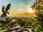 На Ставрополье появится агрохимический кластер