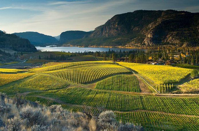 В Британской Колумбии власти намерены бороться с попаданием нитратов в питьевую воду