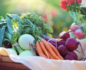 Органическая еда не так уж и полезна для здоровья