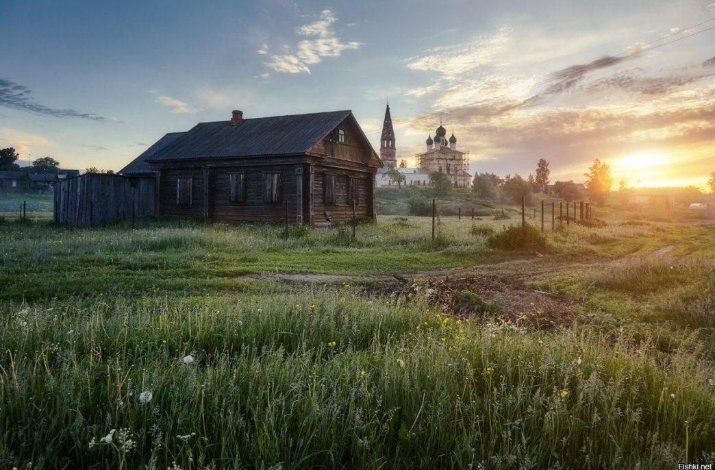 В Ярославской области сокращаются пустоши