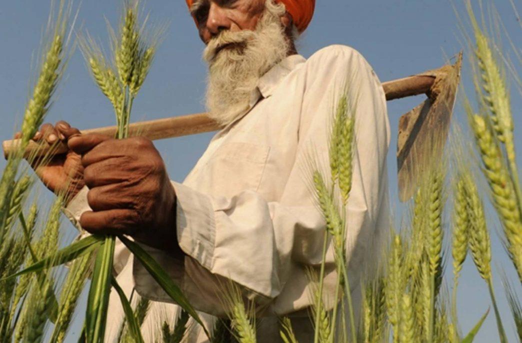 GrowMax Resources отгрузит фосфориты в Индию