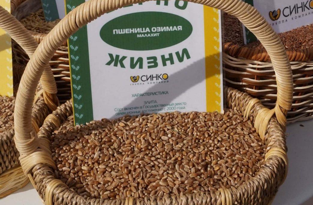 «Зерно Жизни» грамотно использовало агрохимикаты