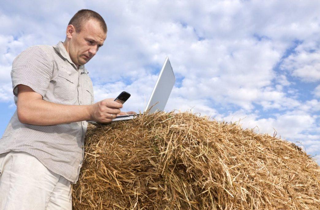 Подмосковные фермеры получат несвязную поддержку