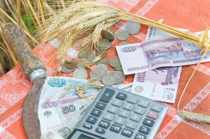 Русские фермеры получат поменьшей мере 230 млрд руб. льготных кредитов