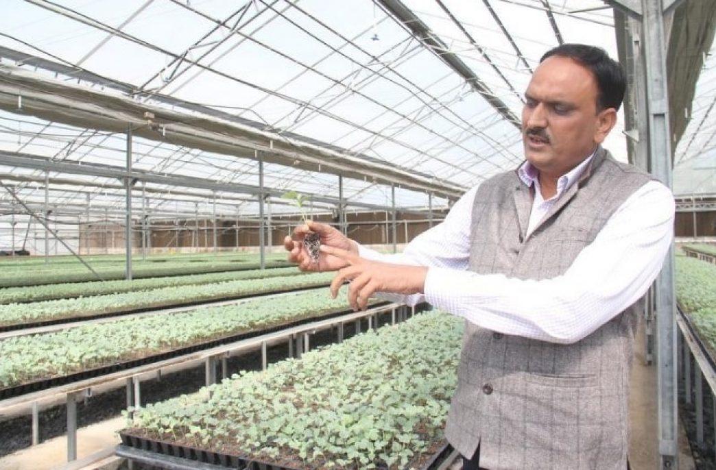 Израильские технологии для индийских аграриев
