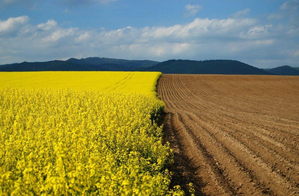 Удобрения в США потихоньку дорожают