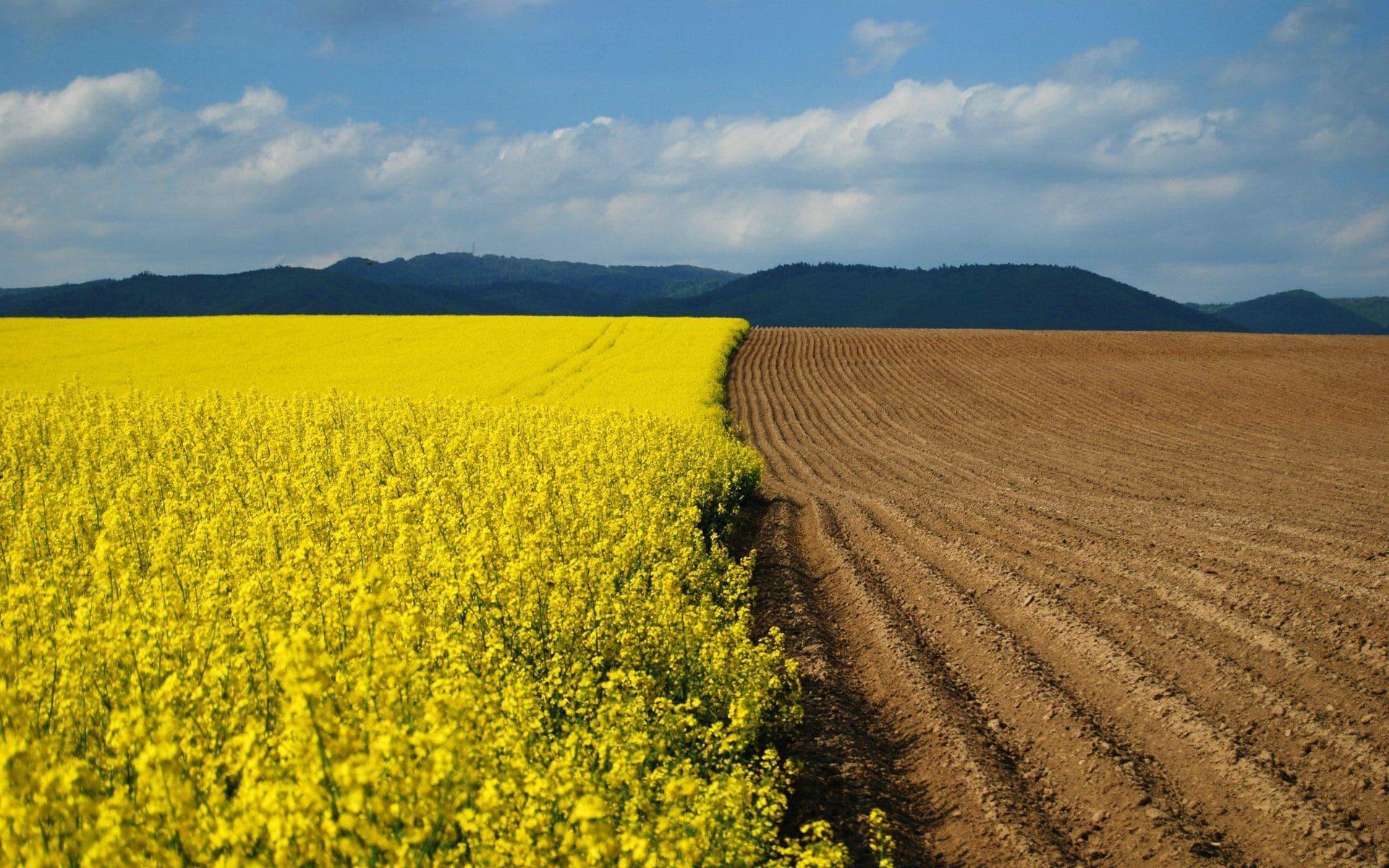 США поле сельское хозяйство без смс
