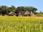 Глава «Уралхима» изучает возможности Зимбабве