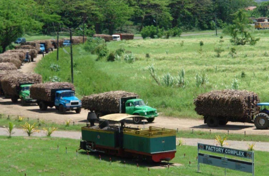 Фиджи увеличивает субсидии на выращивание сахарного тростника