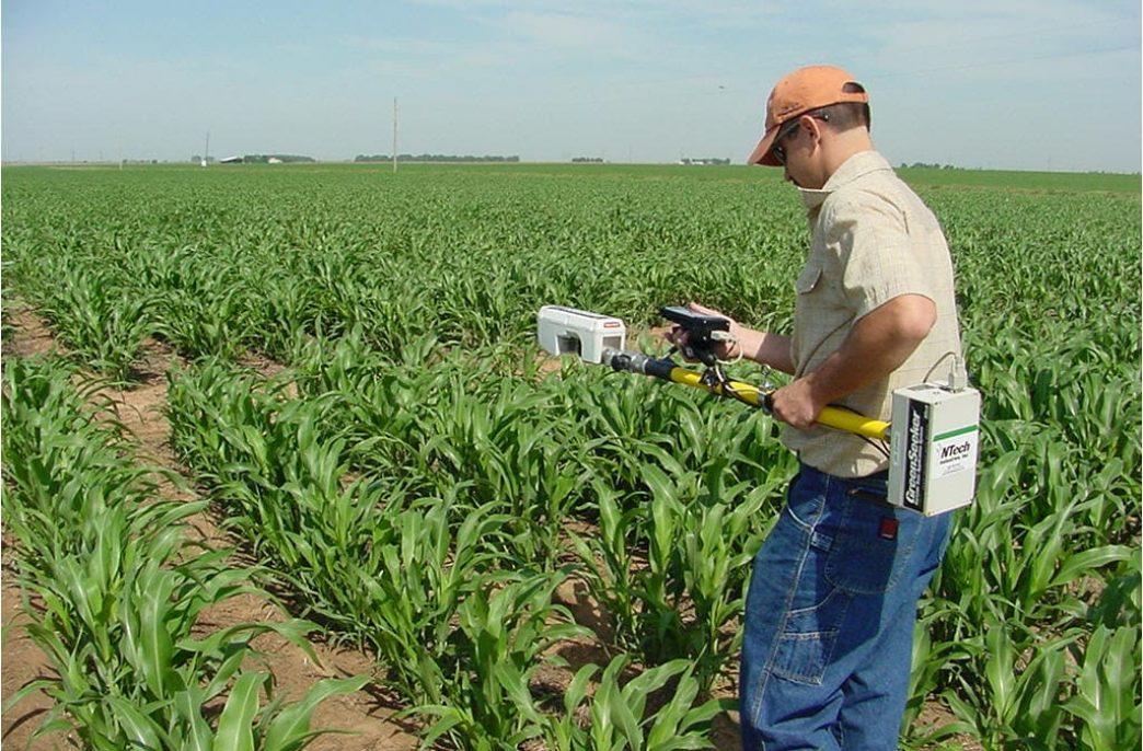 Охотник за зеленью поможет фермерам США