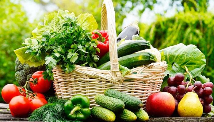 Органическое земледелие в России