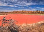 Blackham Resources потянуло с золота на калийные соли