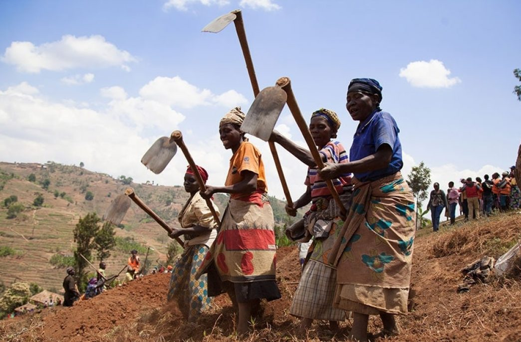 OCP поддержит Танзанию удобрениями