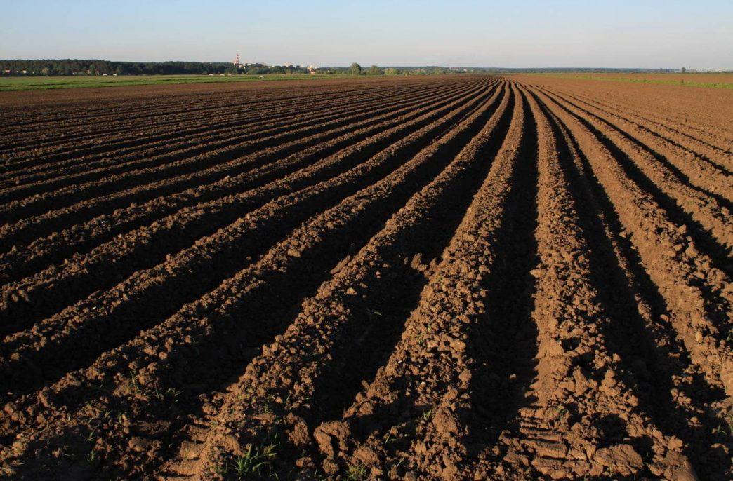 Подмосковные аграрии закупили 23% удобрений