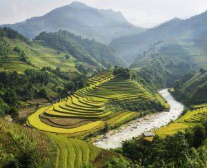 Вьетнам защищается от импорта удобрений