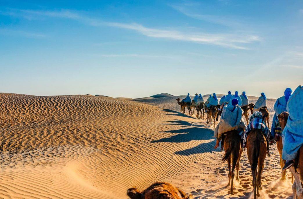 Тунис надеется на рост экспорта в Индию