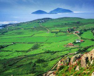Цены на удобрения в Ирландии остаются стабильными
