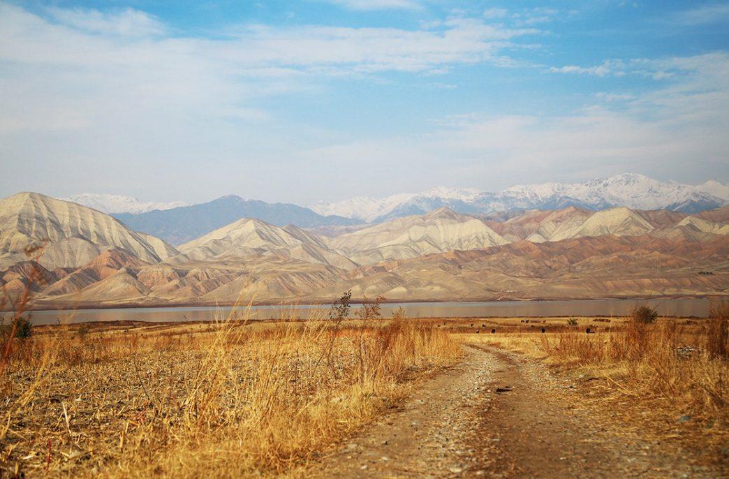Потребление удобрений в Кыргызстане приблизится к 400 тыс. тонн