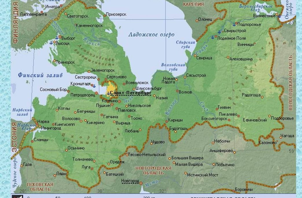 В Ленинградской области стартовала посевная
