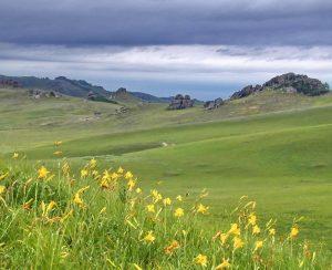 Структура сельхозугодий в Забайкалье нуждается в пересмотре
