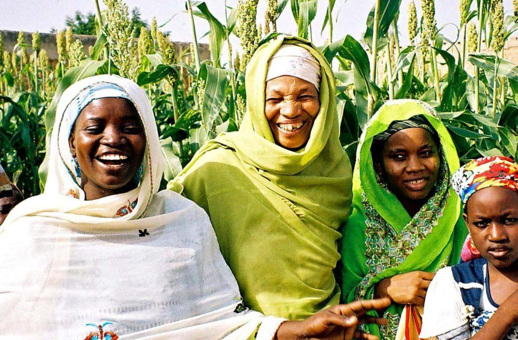 Производство туков в Нигерии может достигнуть 2,22 млн. тонн