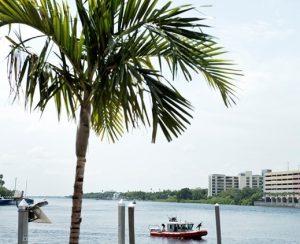 В залив Тампа попало свыше 2 тонн удобрений