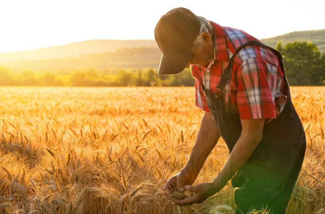 Европейские фермеры с трудом противостоят российским