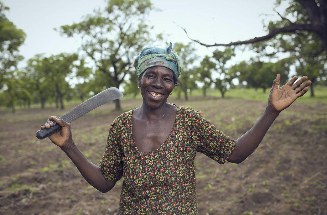 Мелким фермерам в Африке не хватает агрохимикатов