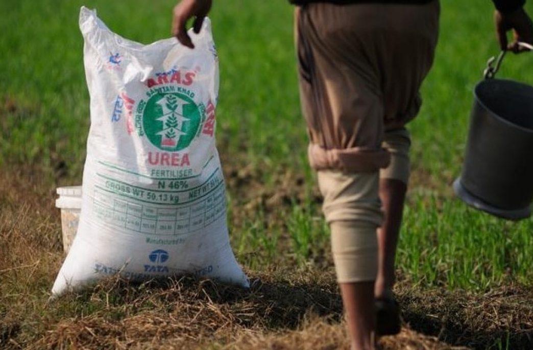 В Индии построят два завода азотных удобрений