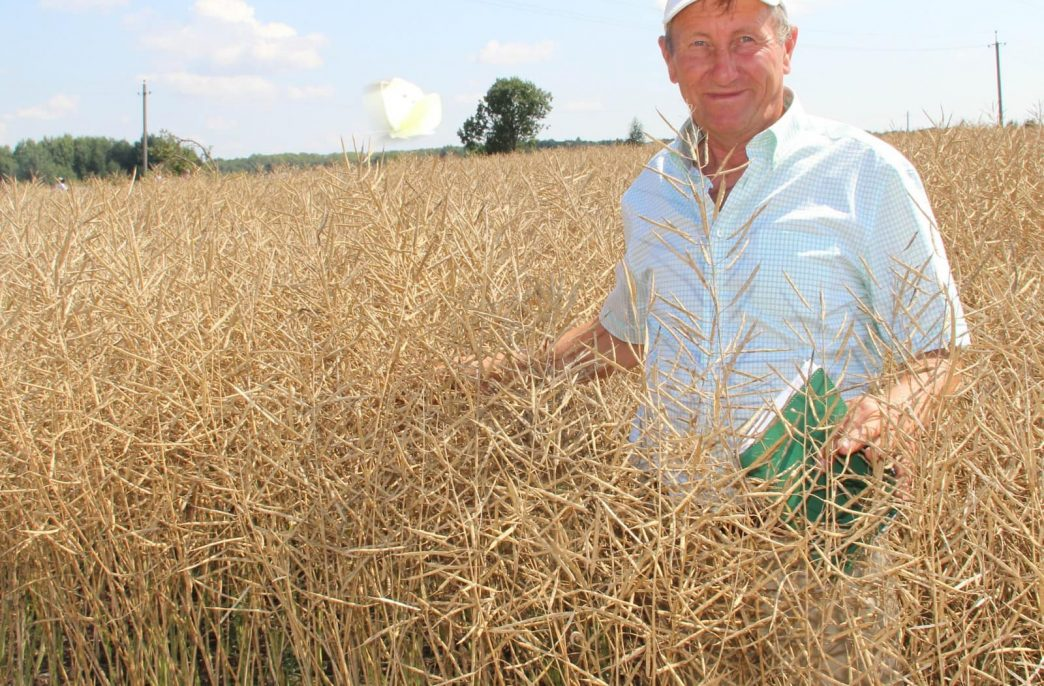 Посевы яровых в России приблизились к 50 млн. га