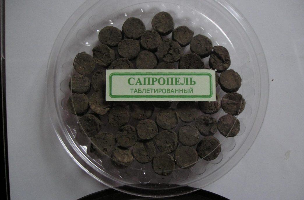 В Новосибирской области планируется выпуск сапропелевых удобрений