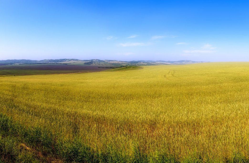 «ФосАгро-Регион» развивает продажи в Сибири