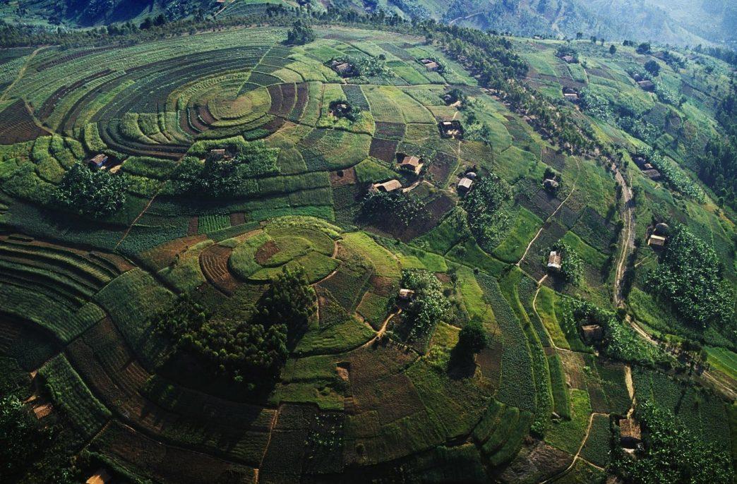 Osukuru выведет Уганду на рынок фосфорных удобрений