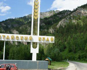 Площади посевов озимых в Алтайском крае могут увеличиться на треть
