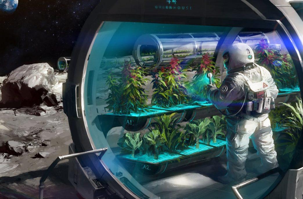 Космическая ферма произвела свой первый урожай