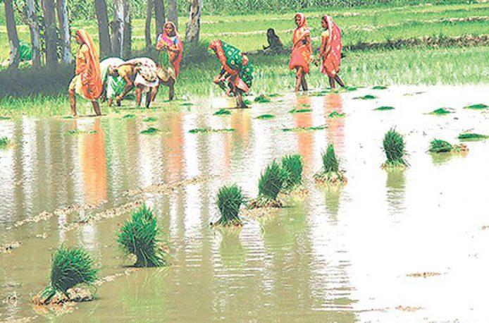 В Непале фермерам не хватает удобрений