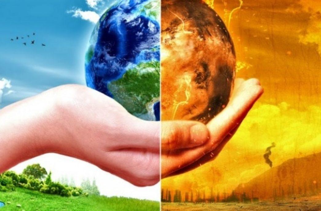 Может ли крохотный папоротник победить глобальное потепление?