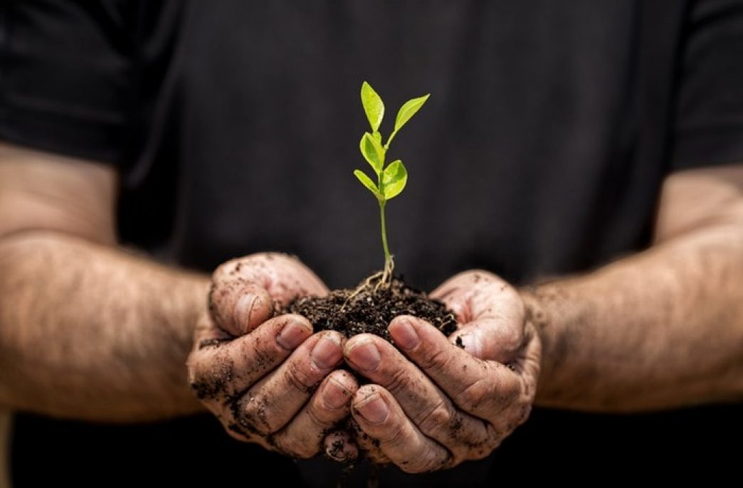 Биотехнологии угрожают производителям агрохимикатов