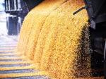 Для введения пошлины на экспорт зерна нет предпосылок
